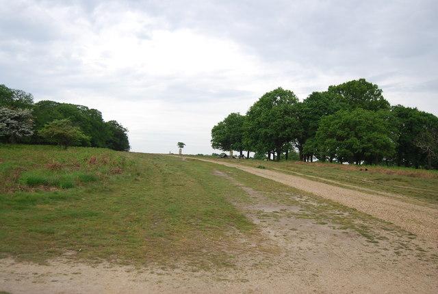 Bridleway across Richmond Park