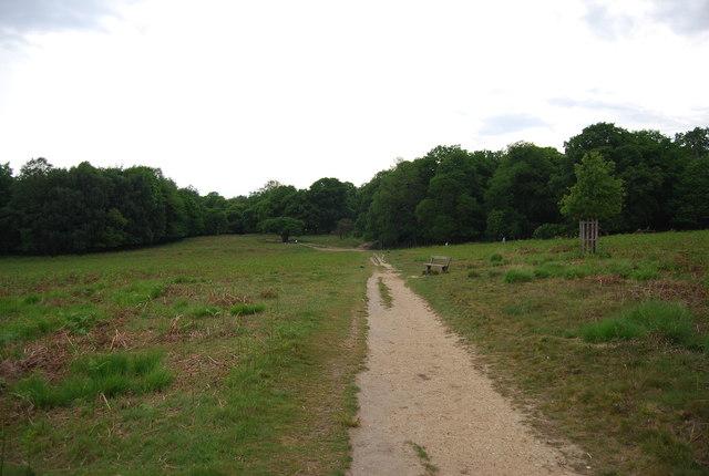 Capital Ring, Richmond Park