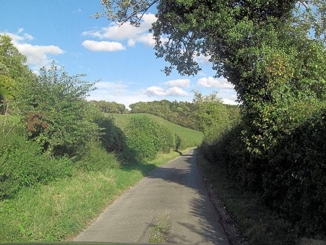 Lane below Hollies Shaw, Southridge