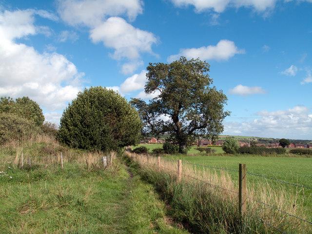 Footpath between fields west of Crook