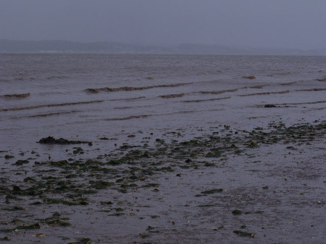 A dirty tide on the Forth near Bo'ness