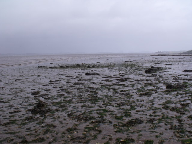 Advancing tide east of Bo'ness on the Forth Estuary