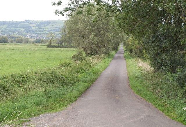 Knowle Moor Drove
