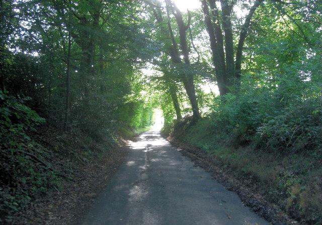 Lane exits Dark Copse, Upper Basildon