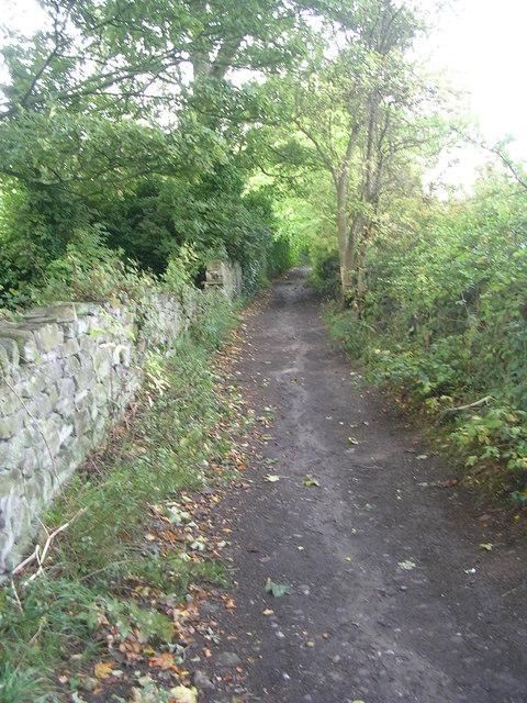 Ellar Carr Road - looking towards Park Road