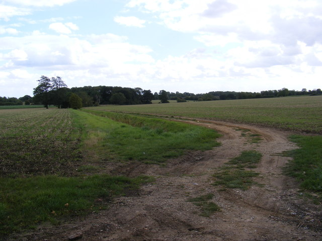 Field entrance near to Moat Farm