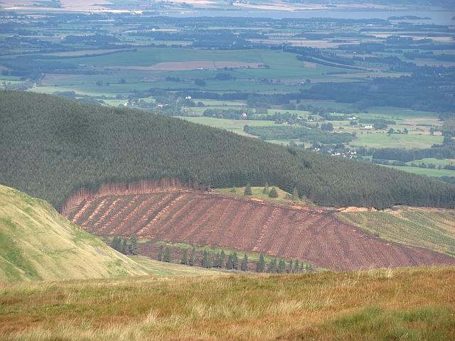Hillfoot Hill