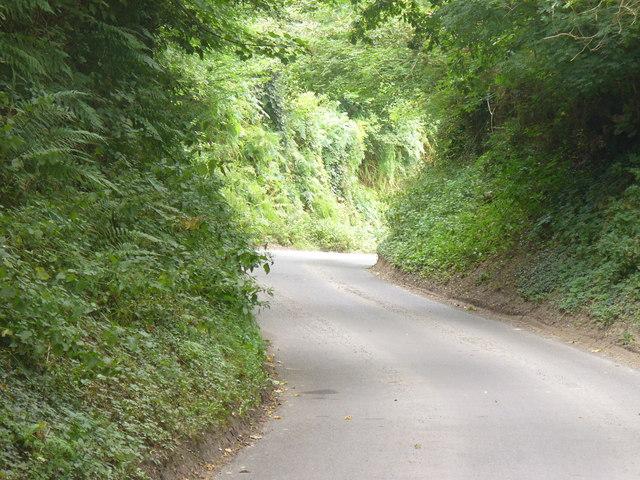 Sunken Lane, West Worldham