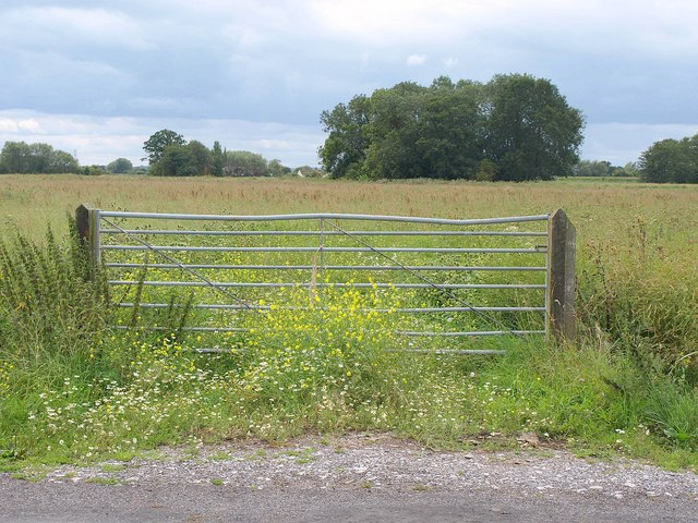 Gate and field, Yeap's Drove