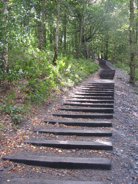 Seventy One Steps