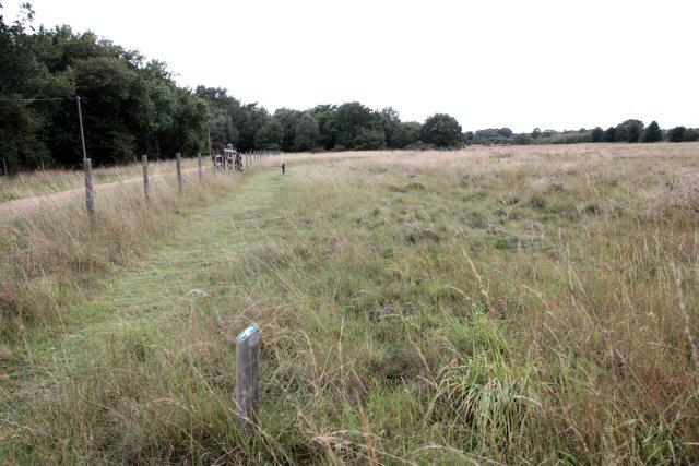 Moor Farm - Nature Reserve
