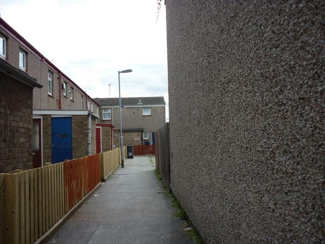 A passageway of Sweet Dews Grove