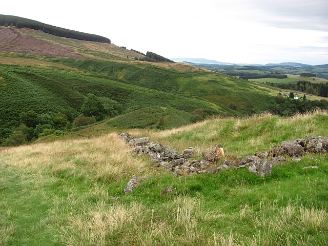 Ruined dyke, Dollar Glen