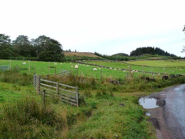 Fields near Torr