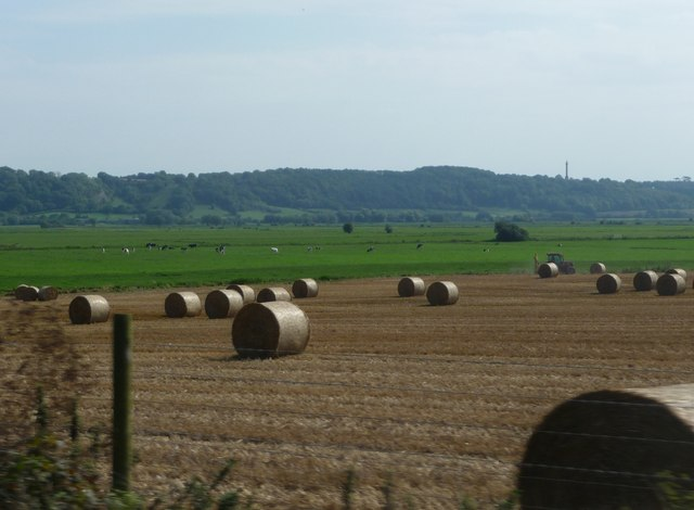 Taunton Deane : Ploughed Fields