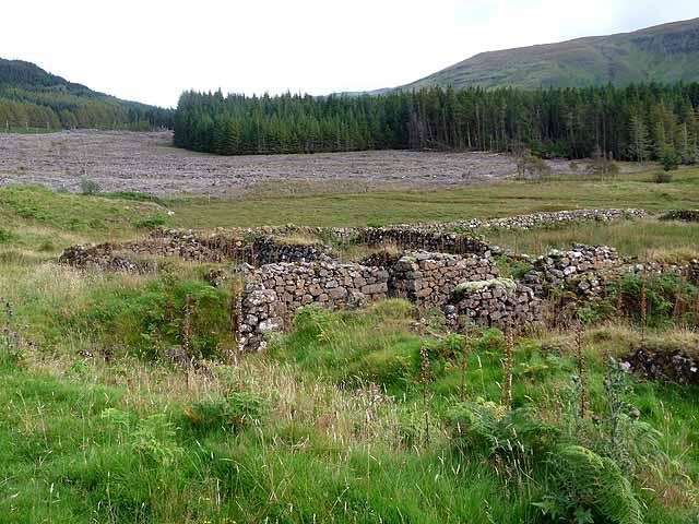 Ruins in Glen Bellart