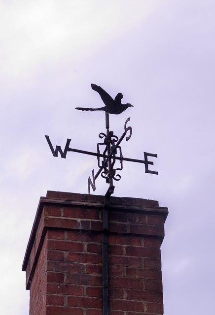 Pheasant weather vane