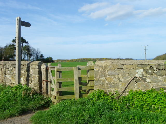 Kissing gate near Bogie Hall