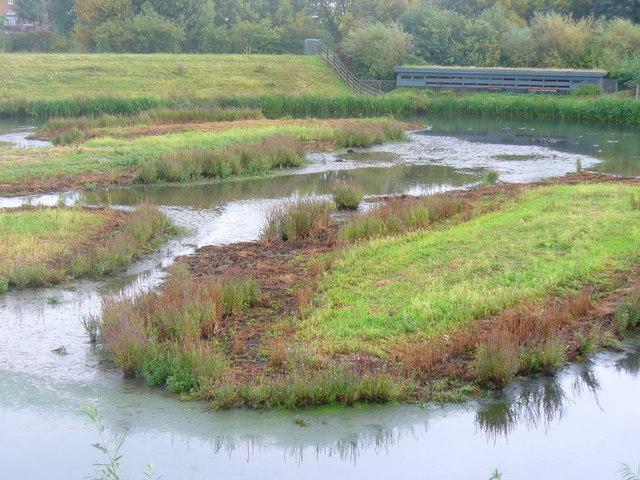 Wetlands and Hide