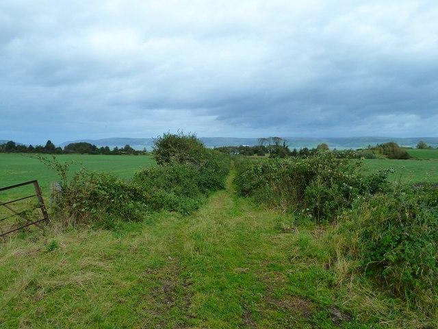 Track to Loch Ryan