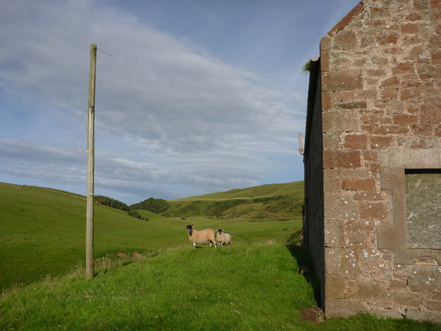 Rural East Lothian : Hanging Out At Lucknow