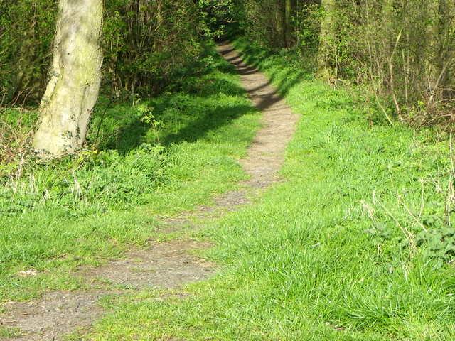 Footpath near Spitalford