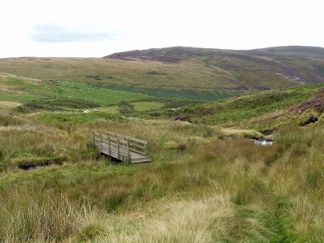 Footbridge in a boggy area