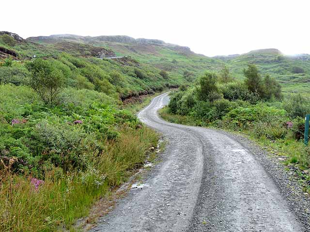Forest road at Carnain an Amais