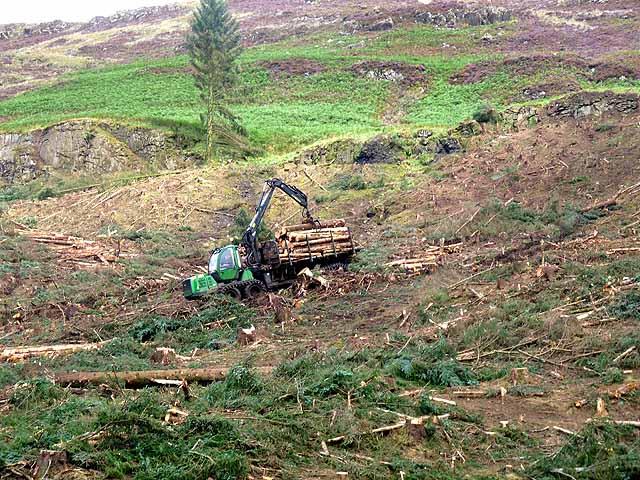 Forest forwarder working above Loch Frisa