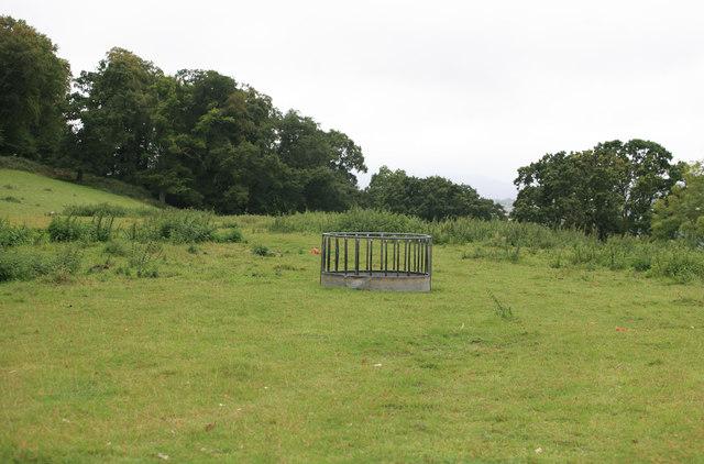 Cattle feeder in the Devon rain