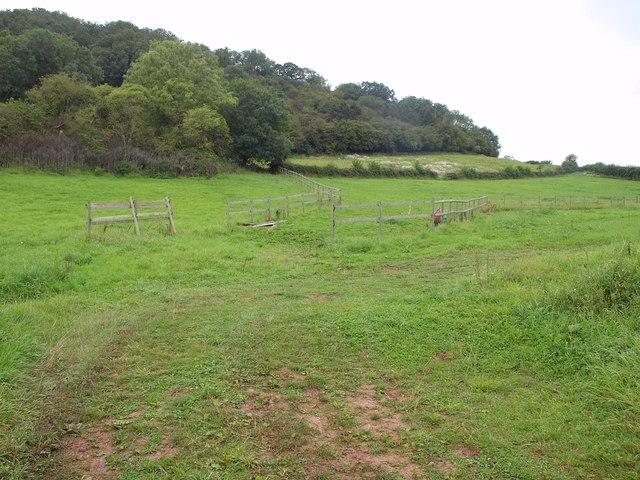 Slopes of Hembury Hill