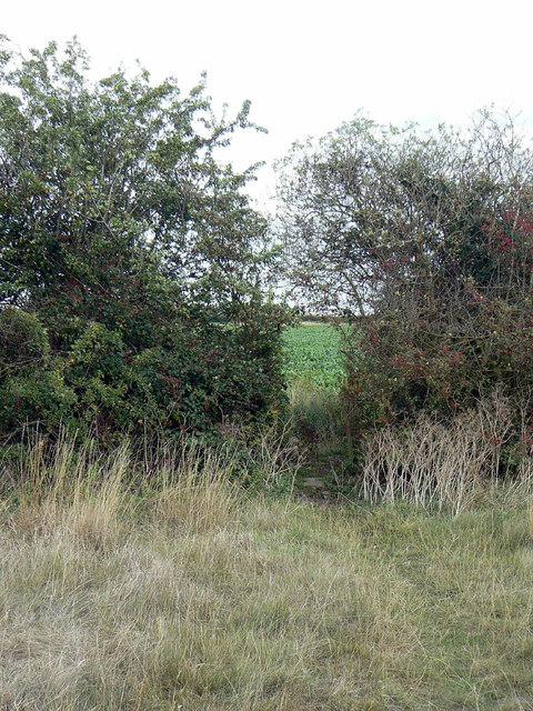 Footpath near Cropwell Butler
