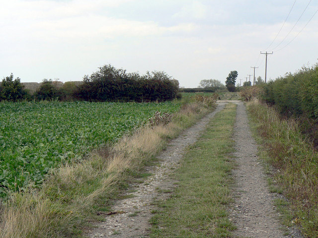 Farm track near Cropwell Grange