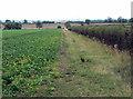 SK6837 : Permissive footpath by Alan Murray-Rust