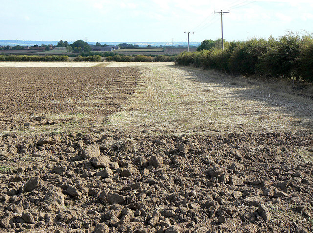 Partially ploughed field