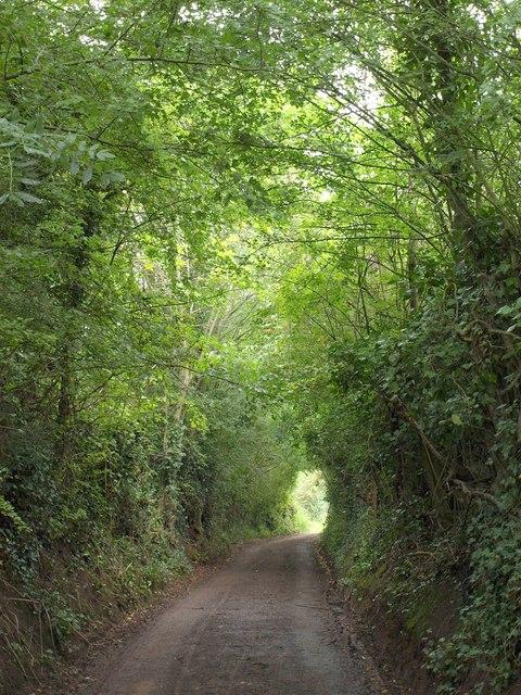 Hiller's Lane
