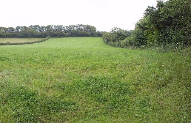 Field near Henton