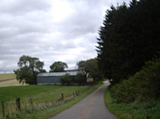 Road to Upper Wheedlemont