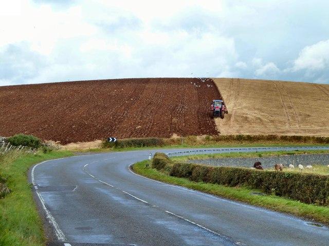 Knockbrax Hill