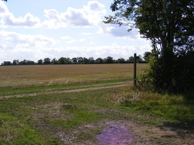 Footpath to Otley Road