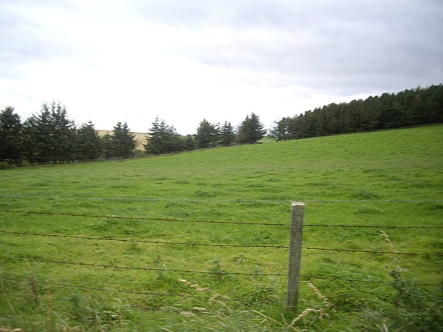 A grass field by access lane to Templand