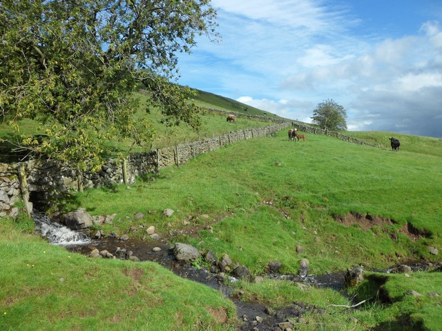 Small burn flowing from the Campsie Fells