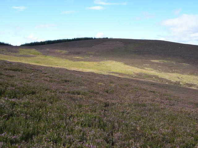 Moorland around the Burn of Melmannoch