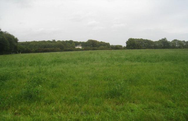 View towards Steventon House