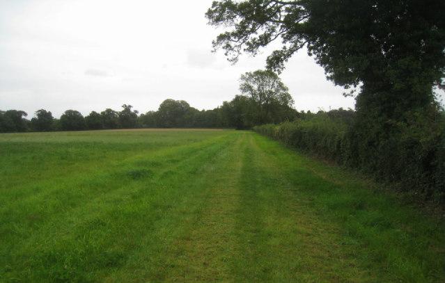 Path through Steventon Park