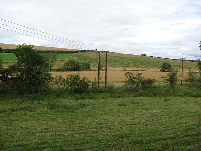 Riverside pasture, Hendersyde