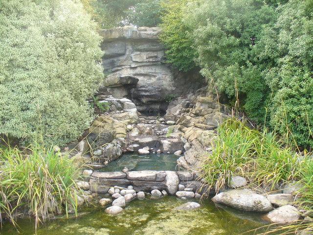 Kiwi Stream