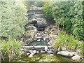 TQ2276 : Kiwi Stream by Colin Smith