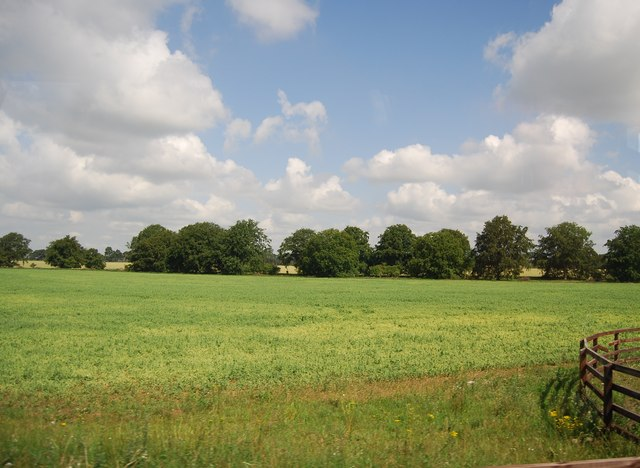 Arable land by the A11