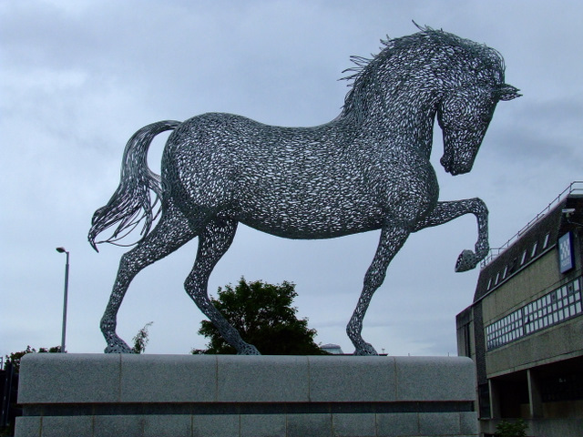 Equus Clutha